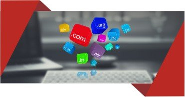 Domain and Web Hosting Services in Bhopal